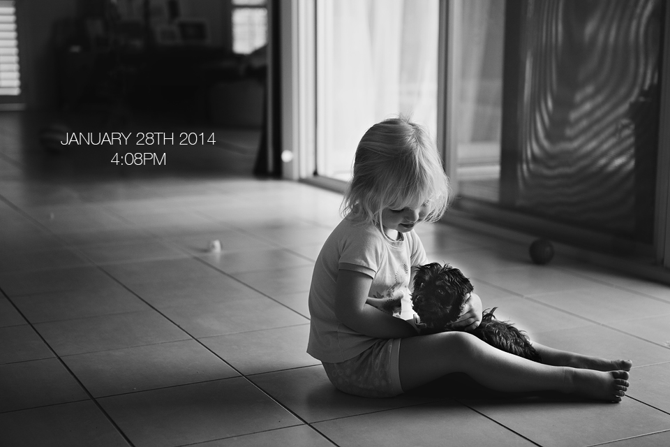 brisbane photographer, girl and puppy