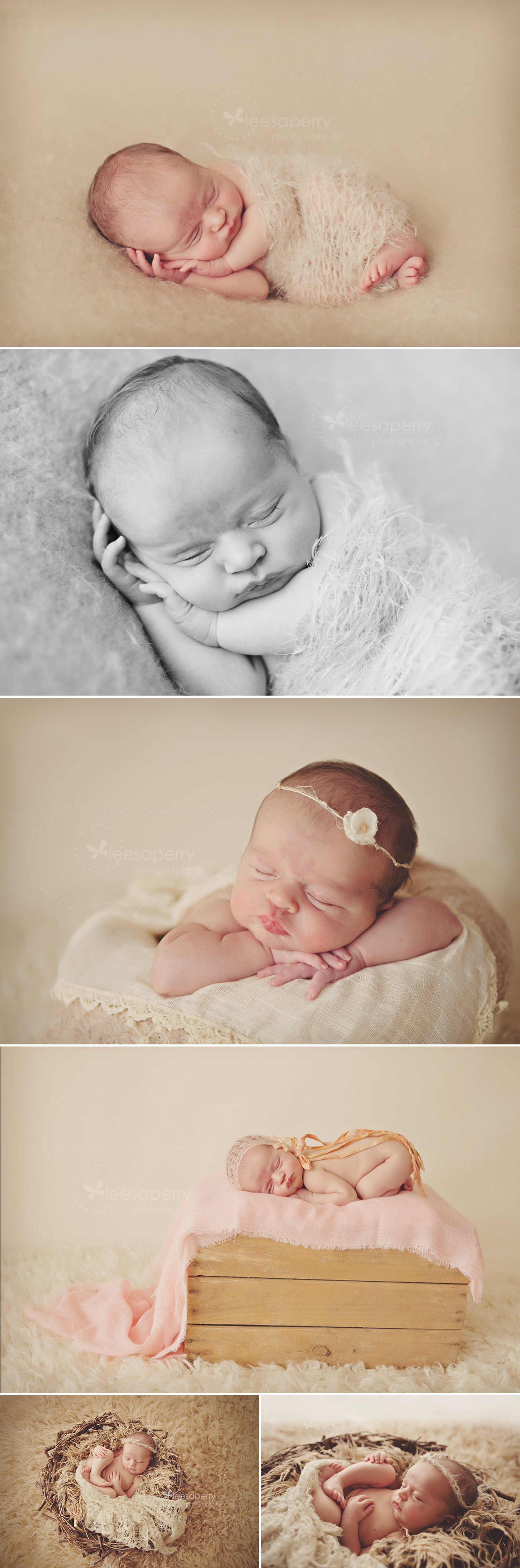 newborn photogrpahy, newborn photographer, brisbane, baby girl